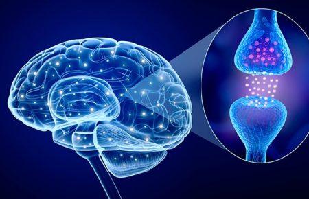اثر سروتونین بر وزوز گوش